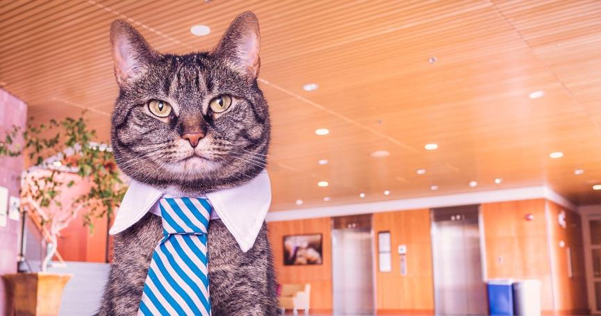 10 stvari za uspjeh na novom radnom mjestu
