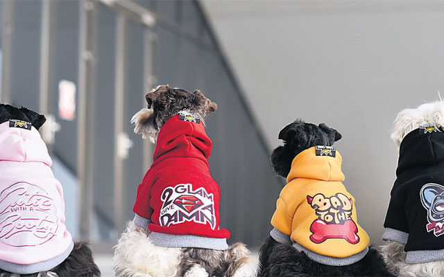 Dizajnerskim 'krpicama' za pse osvajaju strana tržišta