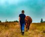Mladić planira doživotno ostati u Slavoniji: 'Imam velike planove za budućnost, oni su naravno vezani uz poljoprivredu'