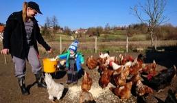 HUMANOST PRIJE SVEGA Manuela je odlučila svakog petka donirati 250 jaja s farme sretnih koka: 'Pomozimo svi gladnima'