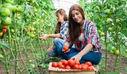 I Hrvatska treba mjere da radnike koji su izgubili posao angažira u poljoprivredi