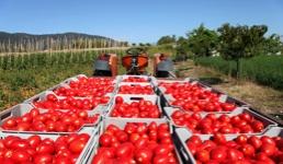 Novi podaci o BDP-u: Istra i Varaždin rasturaju, potonuće Podravine