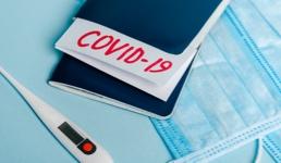 Capak objasnio kako će izgledati 'COVID-putovnice'