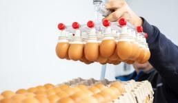 Iz Poljske smo lani uvezli 40 milijuna jaja. Zar i to ne znamo proizvesti?