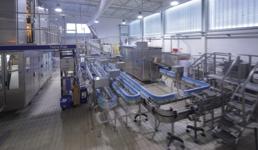 Belje spasilo tvornicu, 250 kooperanata i oko 90 radnika: Na tržište izbacili novo domaće mlijeko