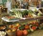 Biznis budućnosti za hrvatske poljoprivrednike – organski uzgoj pod kapom EU