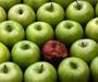 Savjeti: Kako uočiti lošeg zaposlenika prije nego ga zaposlite