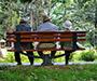 MOR: Gotovo polovina starijeg stanovništva u svijetu nema mirovinu