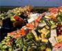 """Ekonomija dijeljenja: Je li došlo vrijeme za """"food sharing""""?"""