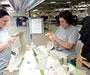 Kompanija Wollsdorf pokraj Varaždina otvara novi pogon s 300 radnika