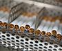British American Tobacco zapošljava nove radnike u Kanfanaru, raste broj izvoznih tržišta