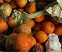 Njemačke studentice uzele hranu iz smeća iza trgovine, sud ih kaznio s 225 eura